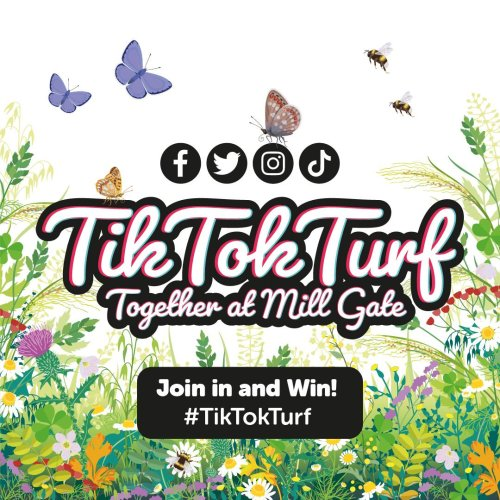 TikTokTurf - Join in and Win!